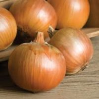 Onion Sets & Plants